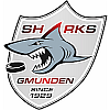 UEHV RAUCH Technology Sharks
